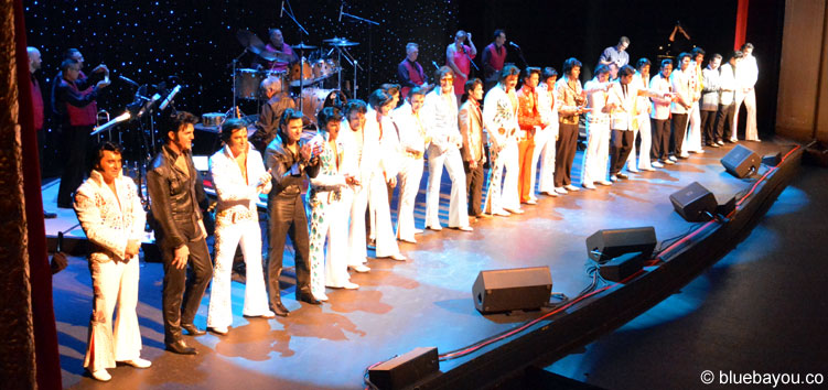 The contestants at the Orpheum Theatre during the Ultimate Elvis Tribute Artist Contest.