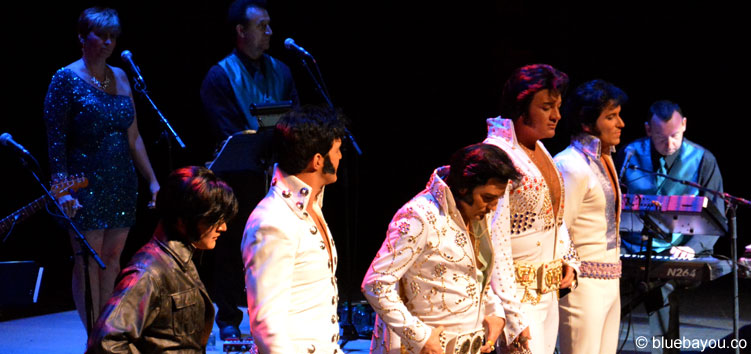 The Top 5 finalists during the Ultimate Elvis Tribute Artist Contest 2015.